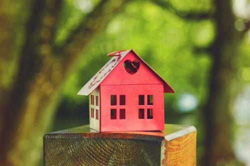 casa in friuli bio house
