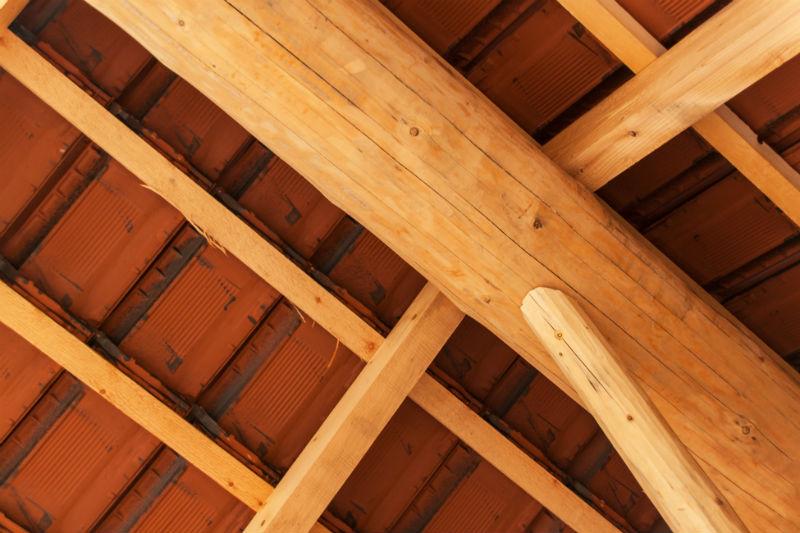 abitazioni in legno in friuli